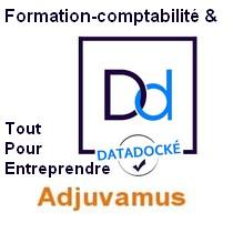 Adjuvamus datadock